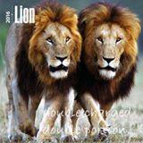 Lyon King Profile Picture